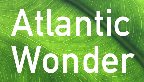 Atlantic Wonder